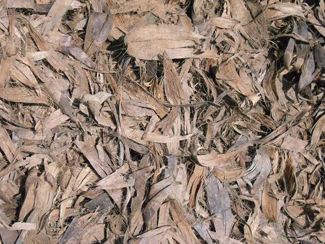 Coconut Husk Mulch