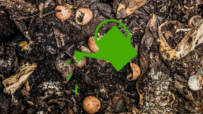 How wet or dry should my compost be