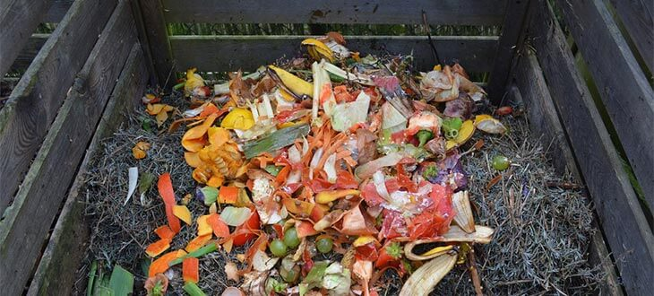 Composting Guide: How To Make Compost at Home
