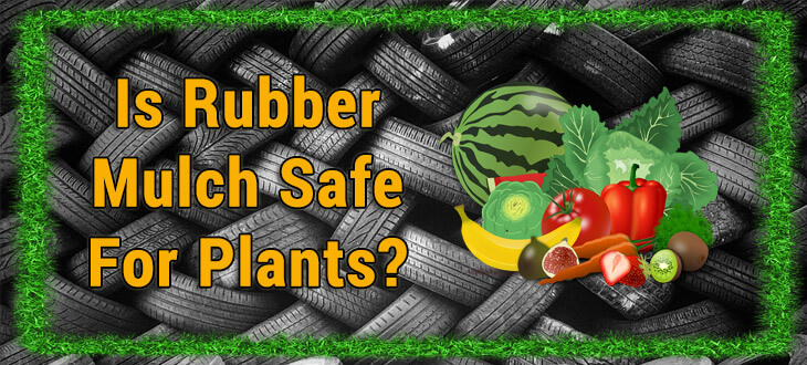 Is rubber mulch safe for plants?