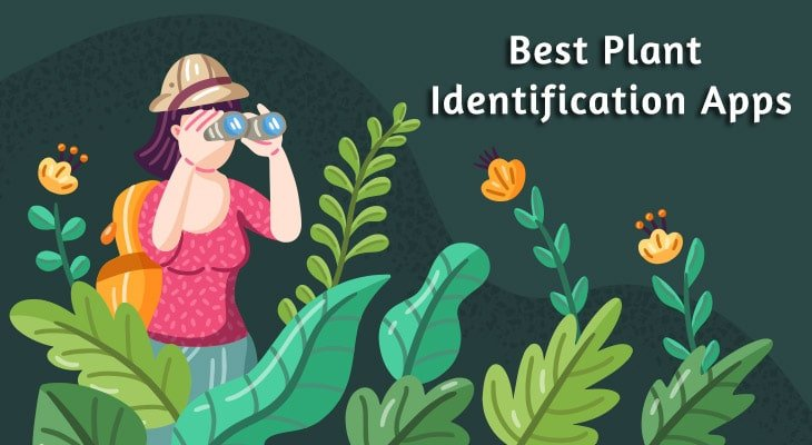 9 Best Free Plant Identification Apps For Android & iOS