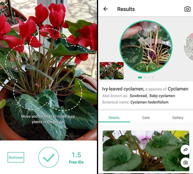 PictureThis: Identify Plant, Flower, Weed and More app screenshots