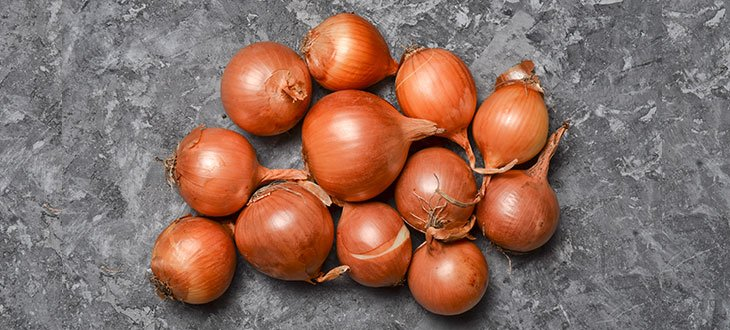 Is An Onion A Vegetable Or A Fruit?