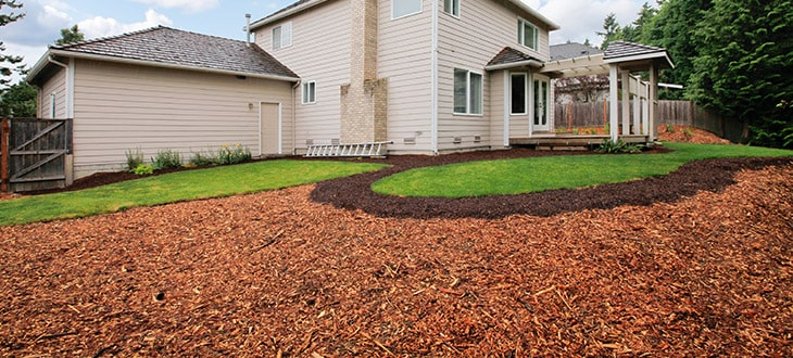 Mulch Blowing vs Manual Mulching In Landscaping
